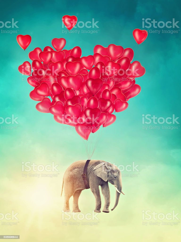 Elephant flying with balloons stock photo