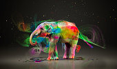 Elephant having fun with paint