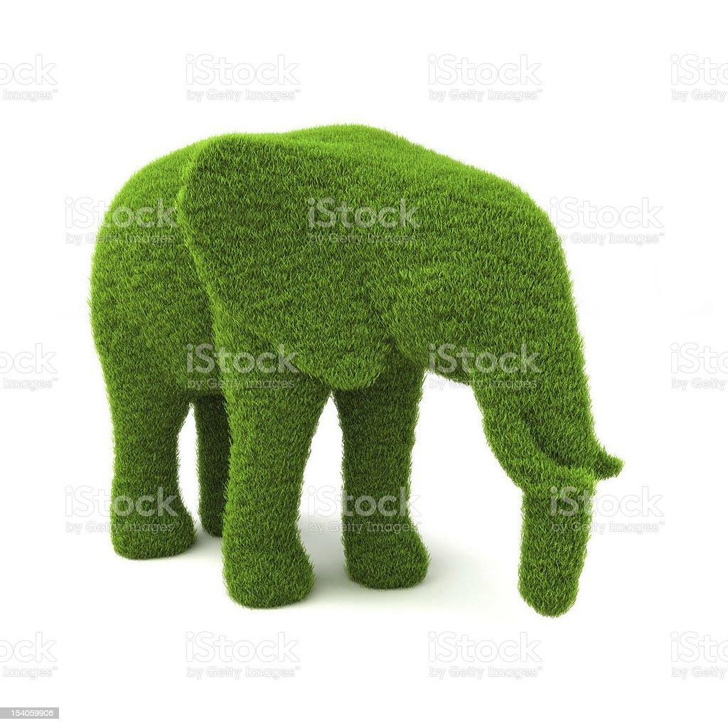 Elephant hedge stock photo