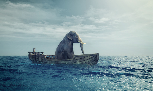 istock Elephant in a boat at sea. 612735238