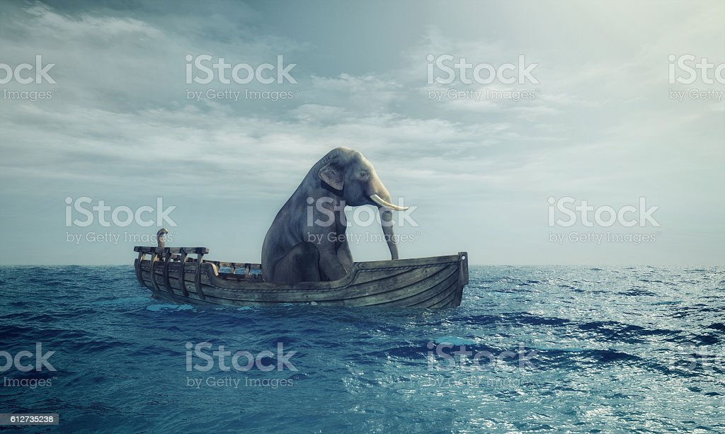 Elephant in a boat at sea. stock photo