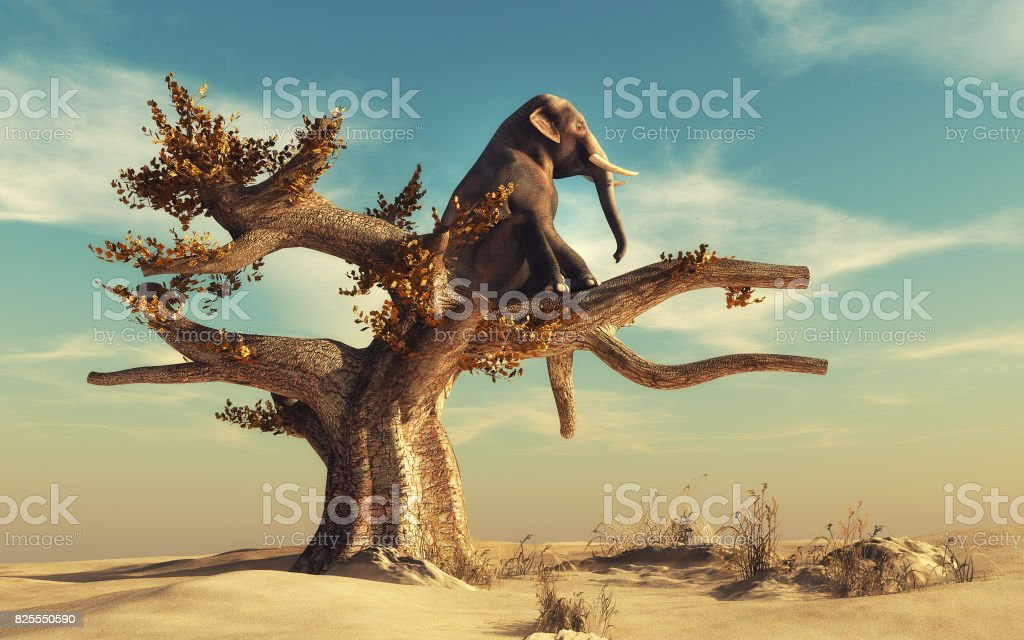 Elephant in a dry tree in surreal landscape stock photo