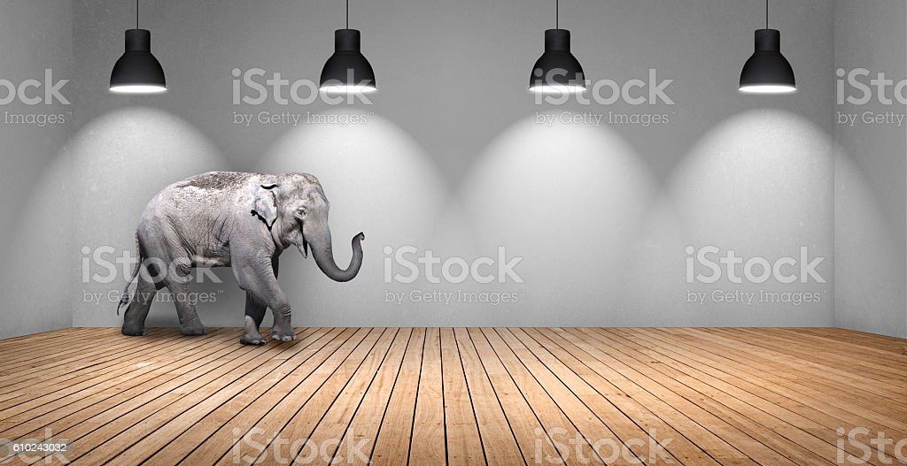 Elephant in domestic room stock photo