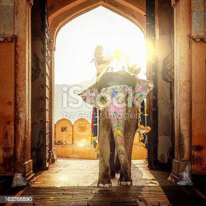 Indian elephant with tourist walking through the entrance of the Amber Palace in Jaipur. Amber Palace, Jaipur, India.