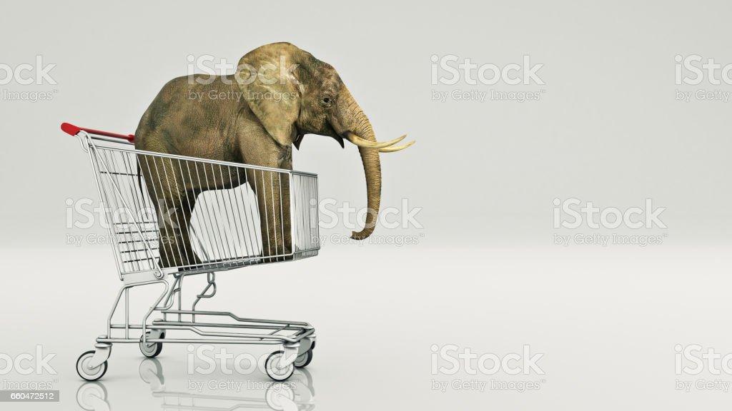 Elephant in shopping cart stock photo
