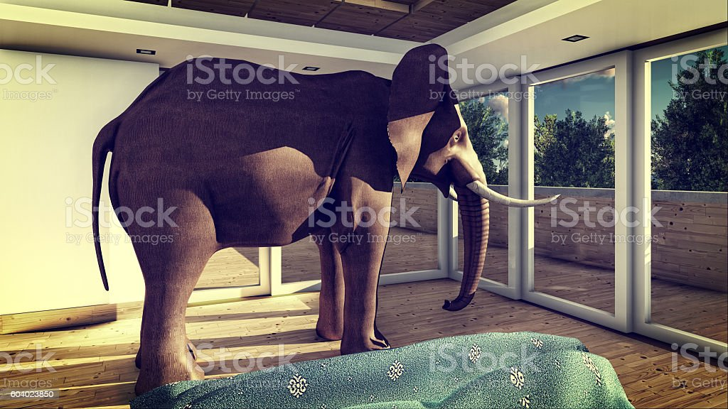 Elephant In The Living Room 3d Rendering   Stock Image .