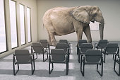 The metaphor of the elephant in the room.  A large African elephant in modern business office conference room.