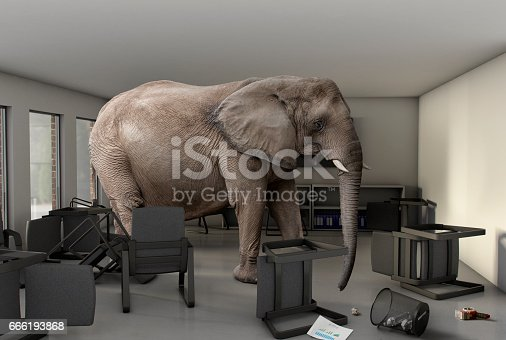 Elephant in the Room - A large elephant in an office meeting room with chairs and paper work knocked over.