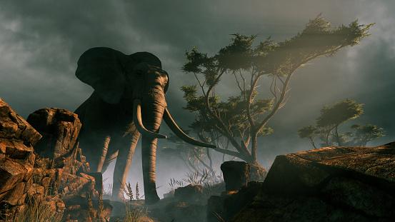 istock Elephant in the wild 1171174802