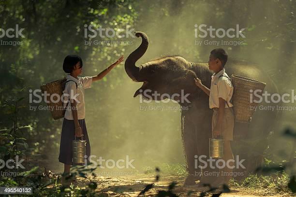 Elephant picture id495540132?b=1&k=6&m=495540132&s=612x612&h=cffrtbhfr2a1sssl0ubse2kr4 zqsrwjfmlbezmrcs8=