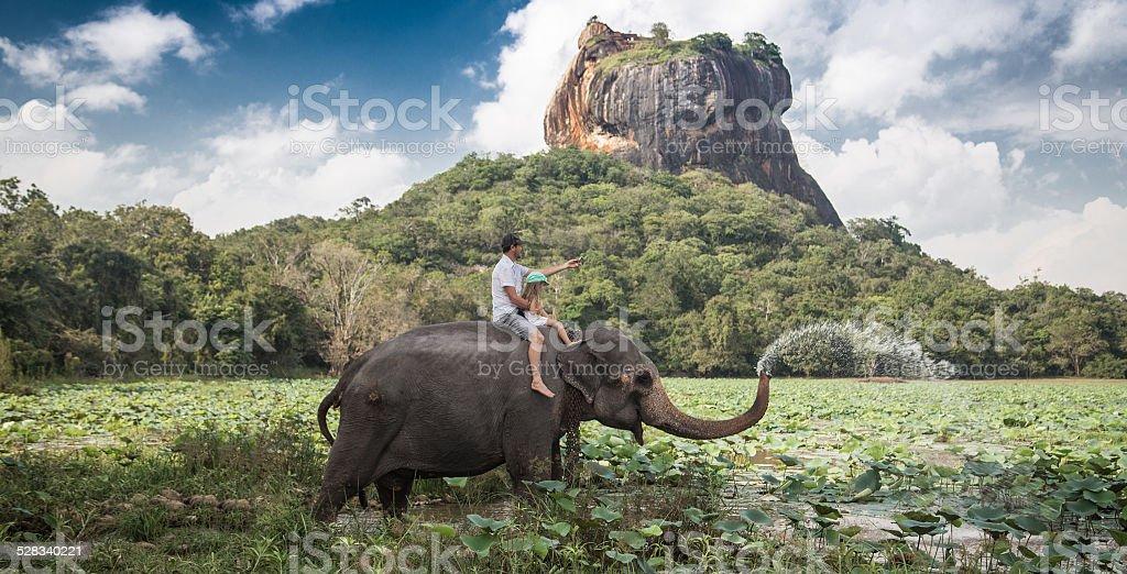 Elephant ride stock photo