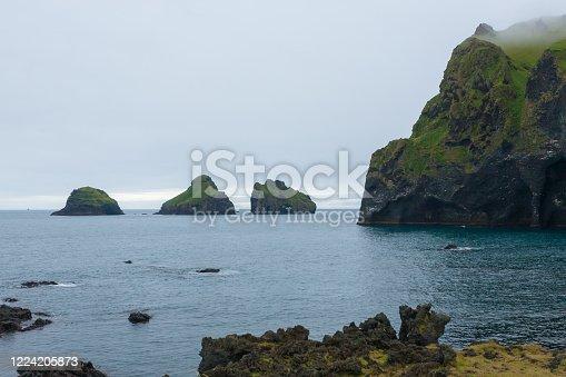 istock Elephant shape rock, Vestmannaeyjar island beach, Iceland 1224205873