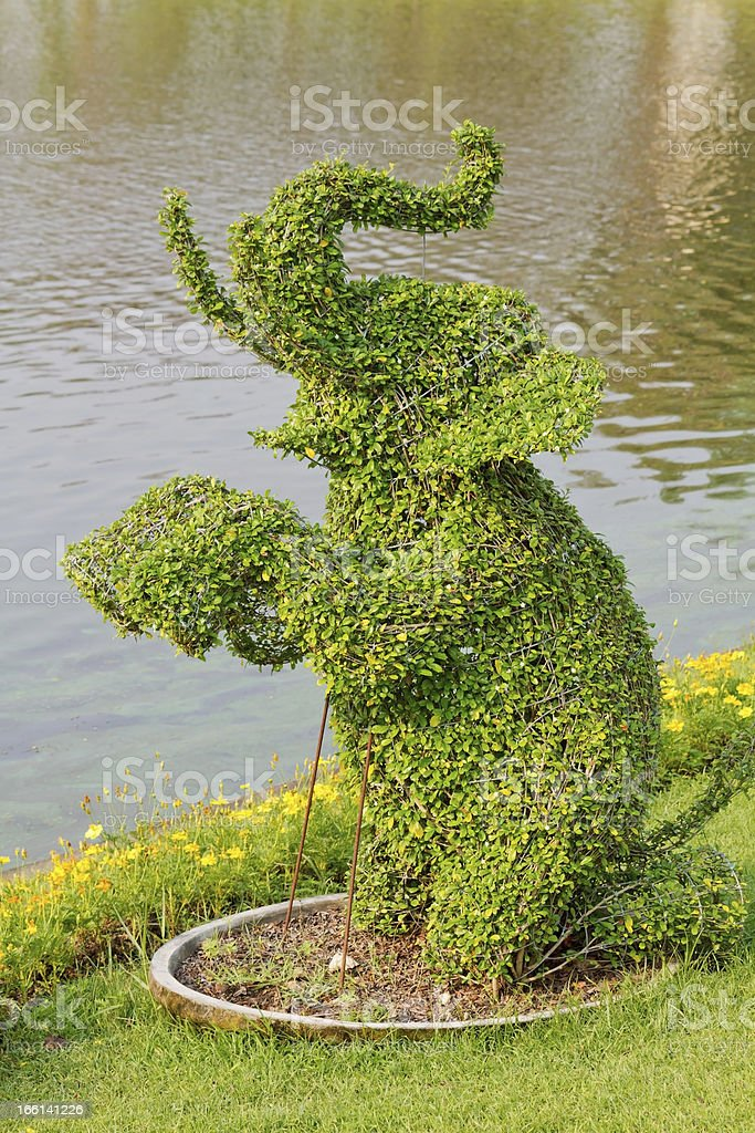 Elephant Shaped Tree royalty-free stock photo