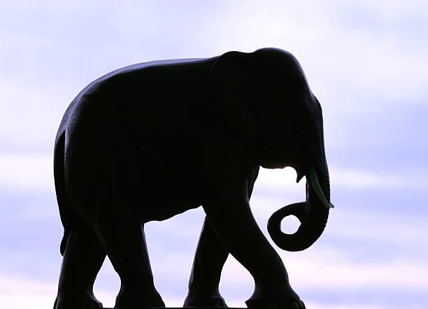 elefanten-silhouette - elefanten umriss stock-fotos und bilder