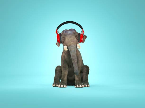 Elephant sitting down and listening music . 3d render stock photo