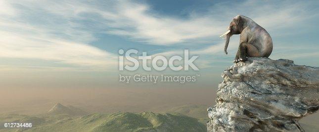 istock Elephant sitting on edge 612734486