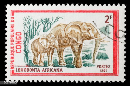 Stamp depicting african elephants circa 1971 in Congo