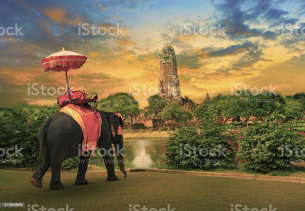 elephant standing with beautiful ancient city Ayuthaya world heritage site stock photo