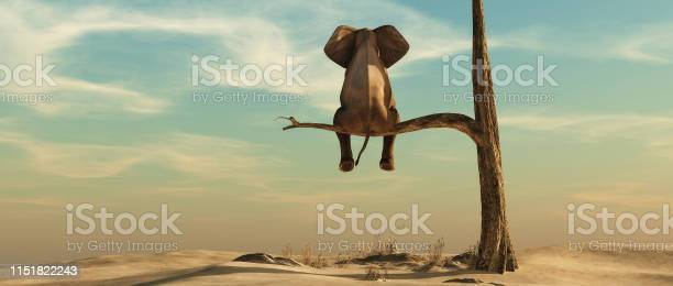Photo of Elephant stands on thin branch of withered tree in surreal landscape. This is a 3d render illustration