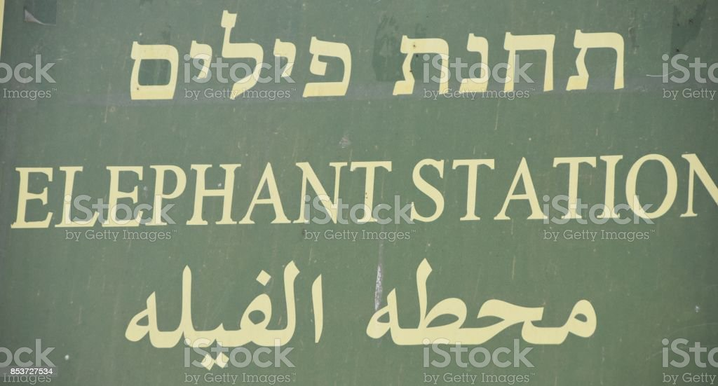 Elephant Station-SIGN stock photo