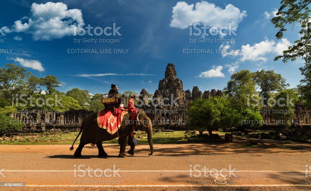elephant tour stock photo