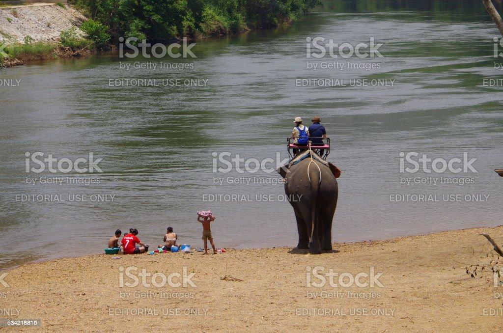 Elefante de senderismo en el norte de Tailandia foto de stock libre de derechos