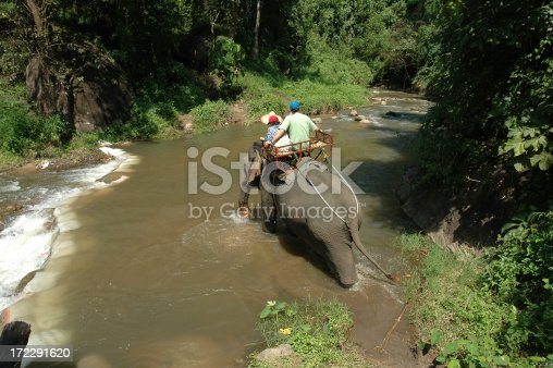 Father and son elephant trekking in  North Thailand Chaing Mai region