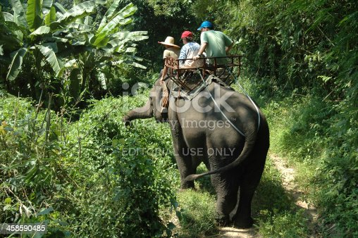 Chaing Mai region, Thailand - October 11th 2005: Father and son tourists with guide elephant trekking in  North Thailand Chaing Mai region.