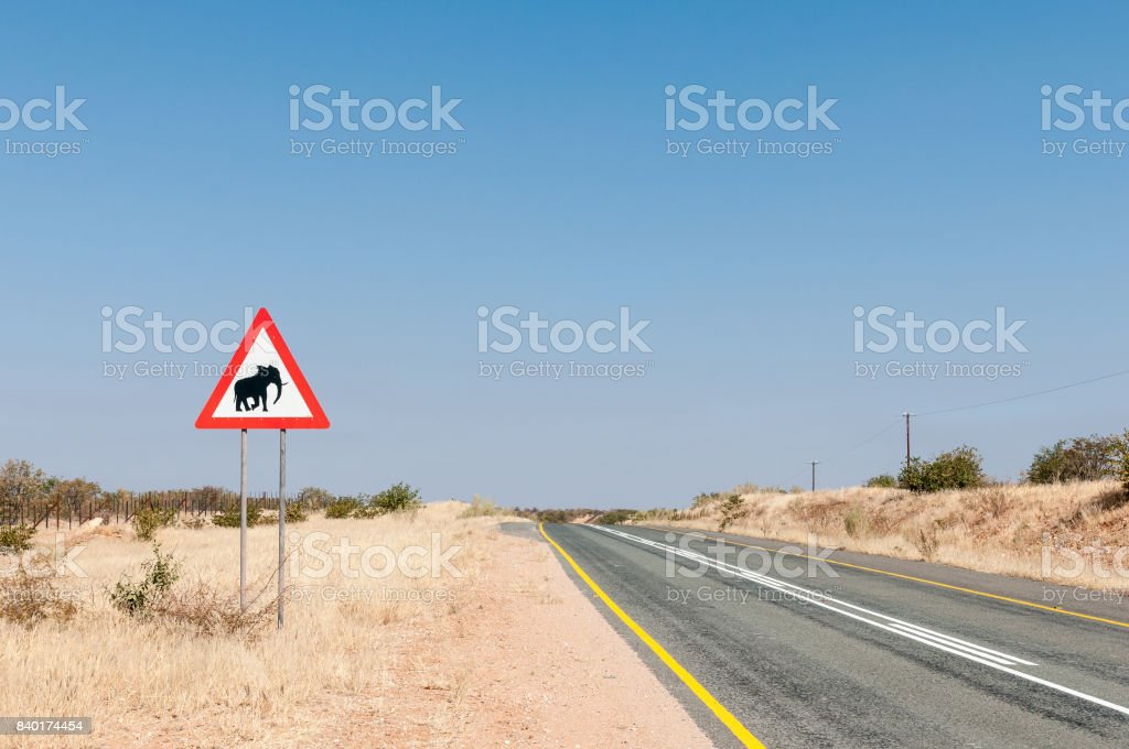 Elephant warning road sign in North-Western Namibia stock photo