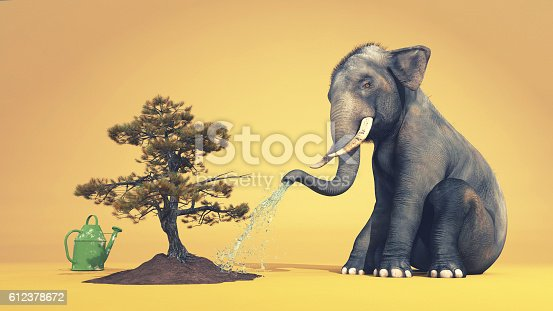 istock Elephant watering a tree 612378672