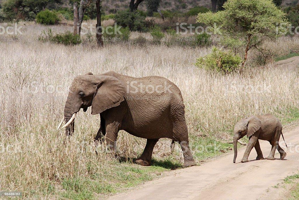 Elefant mit baby-ein road Lizenzfreies stock-foto