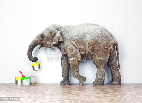 istock elephant with paint cans 498141156
