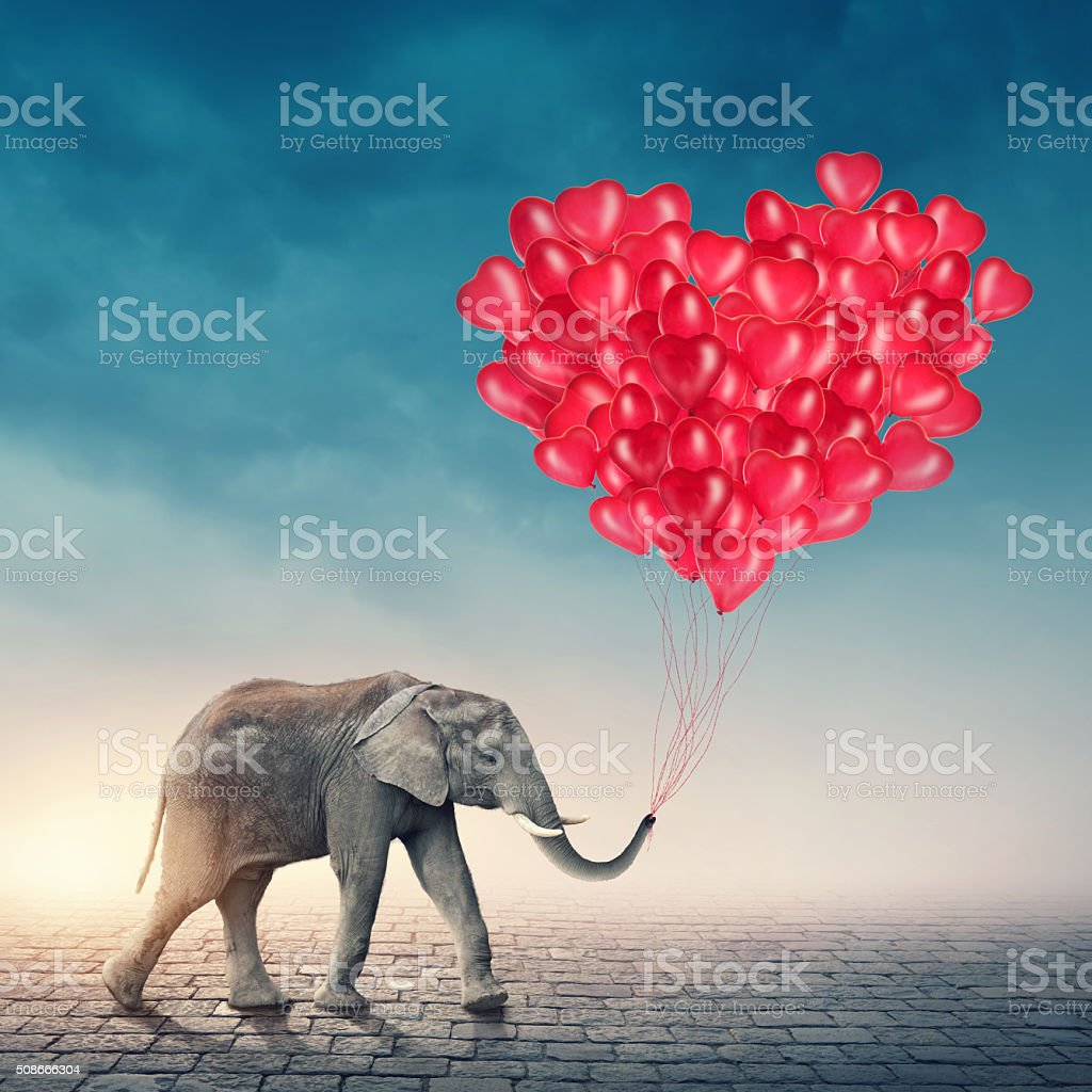 Elephant with red balloons stock photo