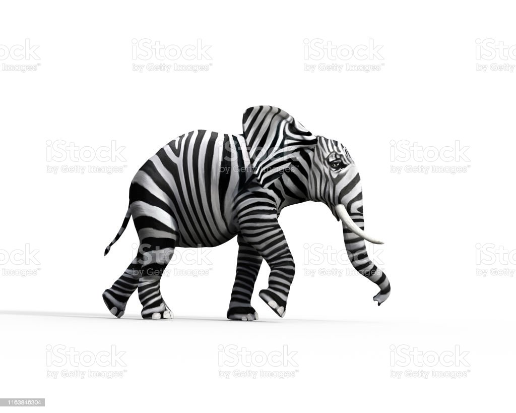 Elephant with zebra skin in the studio. The concept of being different. 3d render illustration - Стоковые фото Африка роялти-фри