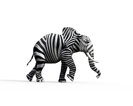 Elephant With Zebra Skin In The Studio The Concept Of Being Different 3d Render Illustration — стоковые фотографии и другие картинки Африка