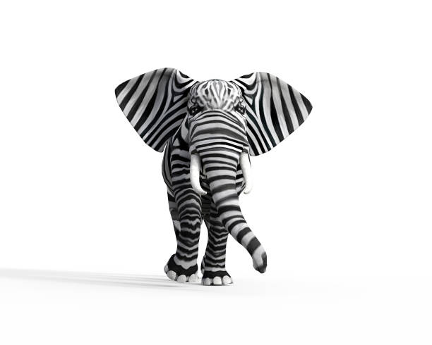 Elephant with zebra skin in the studio. The concept of being different. 3d render illustration Elephant with zebra skin in the studio. The concept of being different. 3d render illustration animal captivity building stock pictures, royalty-free photos & images