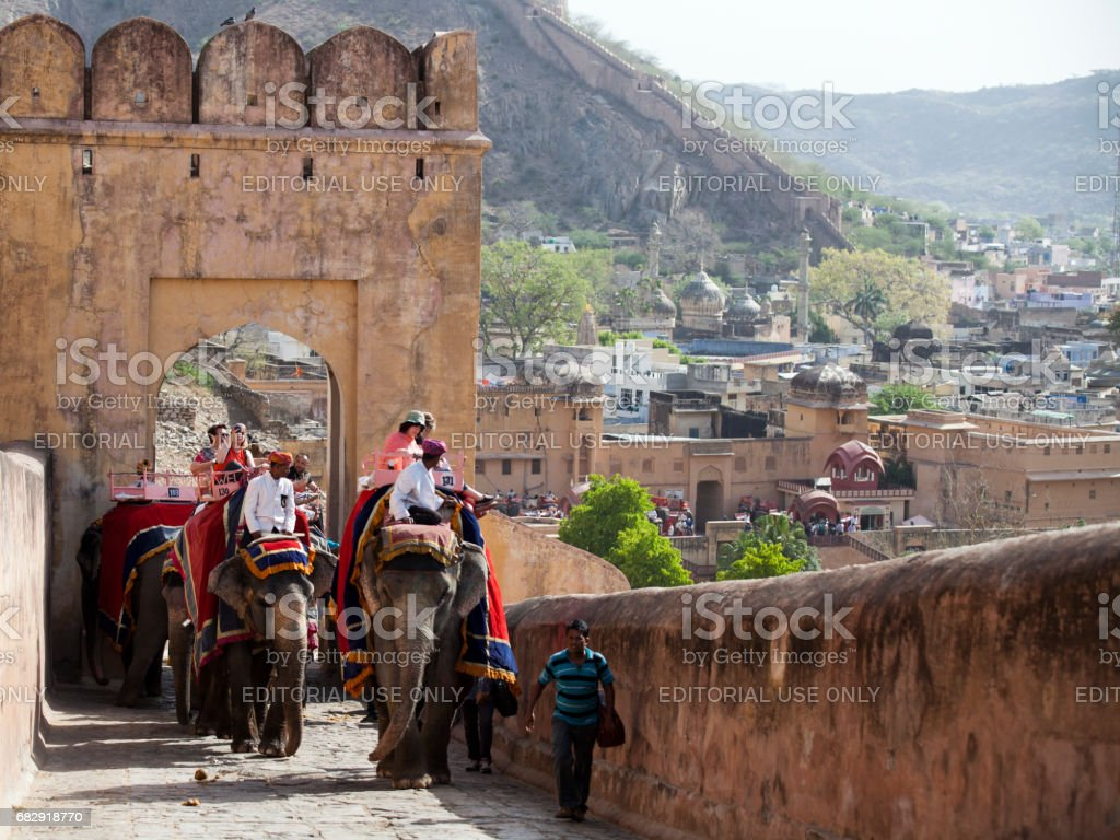 Elephants and Mahouts taking tourists up to the Amber Fort near Jaipur, India stock photo