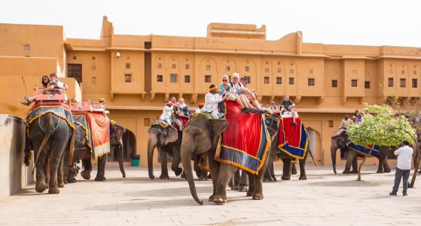 Elefanten und Touristen in Amber Fort in Jaipur, Indien, 16. April 2018 – Foto