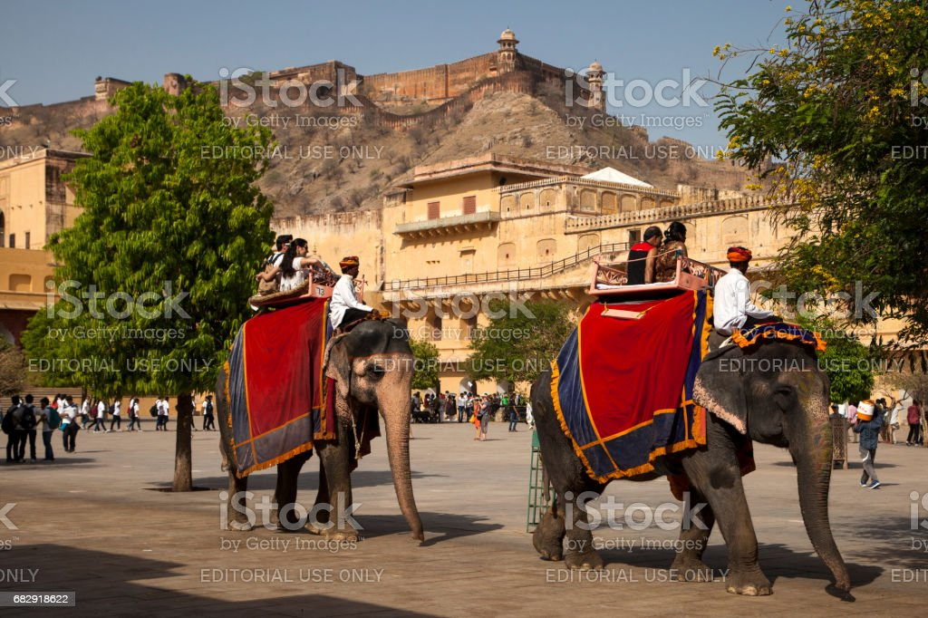 Elephants carry tourists at the entrance to the Amber Fort near Jaipur, India stock photo