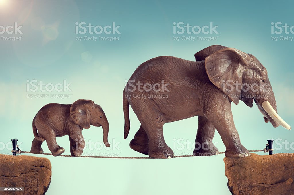 elephants on a tightrope stock photo