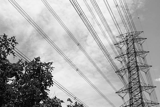 Eletric tower with tree in black and white stock photo