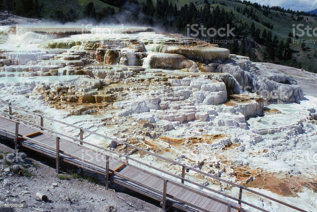 Elevated walkway of the Mammoth Hot Springs in Yellowstone National Park Wyoming stock photo