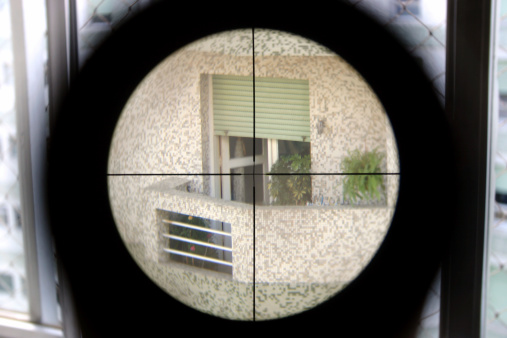 Elite shooter view