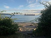 Elliott bay beach with a ship offshore.