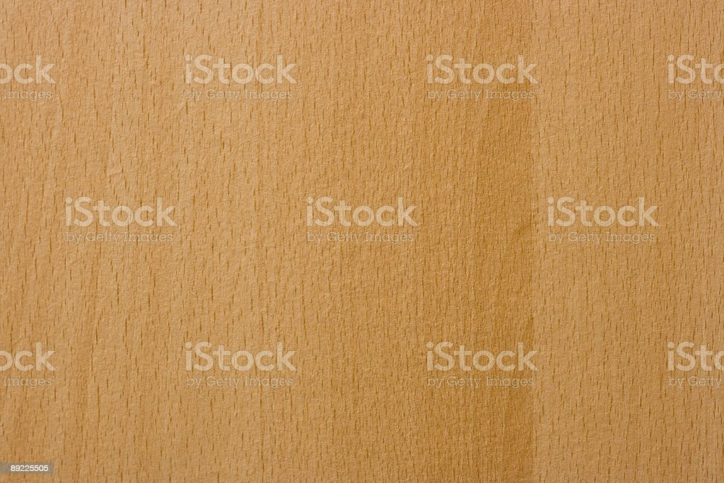 Elm Wood royalty-free stock photo