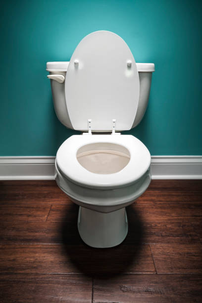 Elongated toilet with the seat lid up stock photo