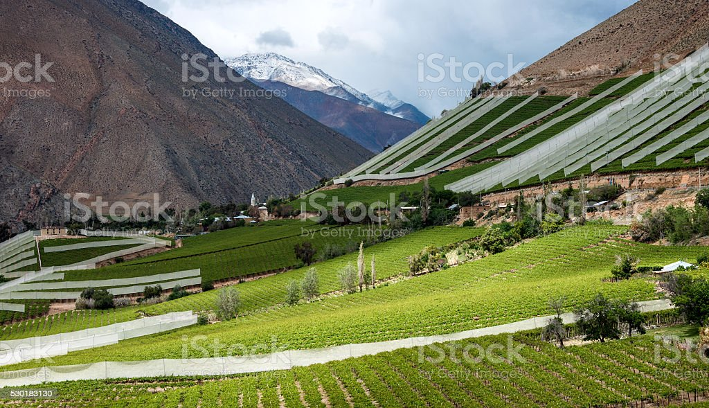 Elqui Valley, Andes part of Atacama Desert, Chile stock photo
