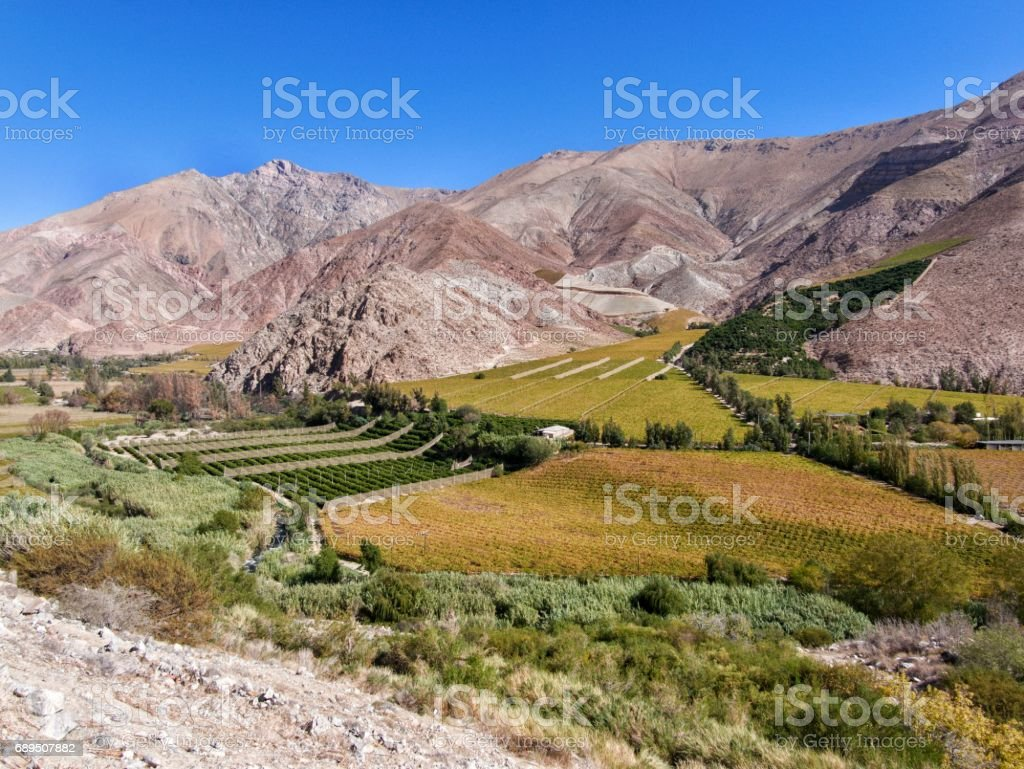 Elqui valley, Chile stock photo