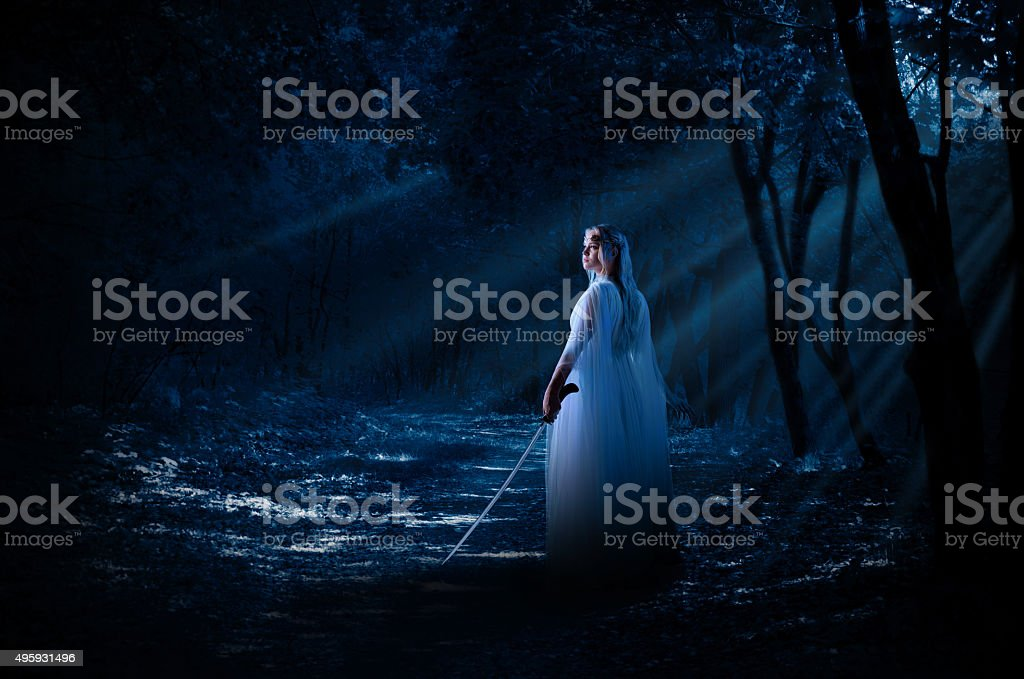 Elven girl with sword in night forest stock photo