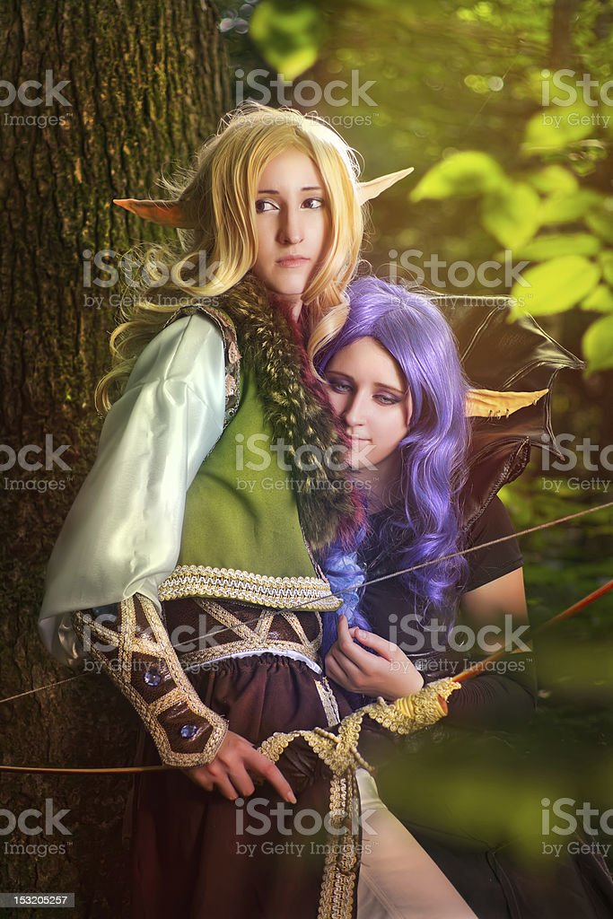 Elves From The Woods stock photo
